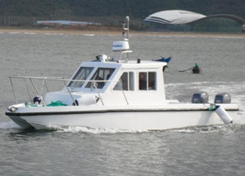 26英尺双体游钓艇